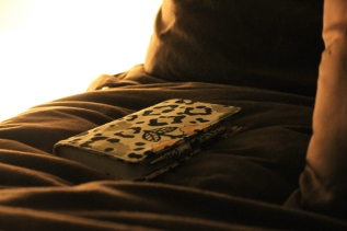 bedside journal
